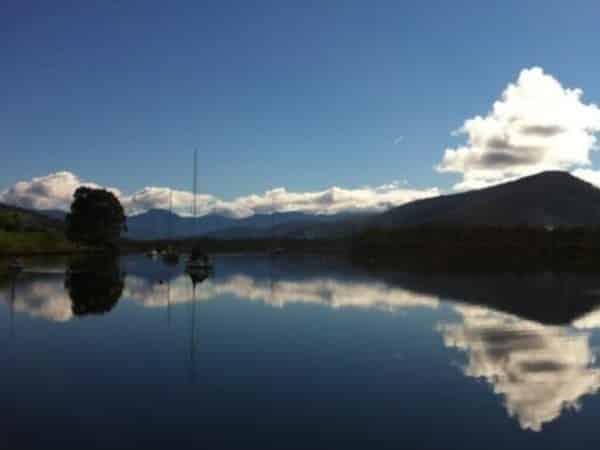 Úc: Hỏa hoạn tại trang trại cá khiến 52000 con cá hồi được thả tự do
